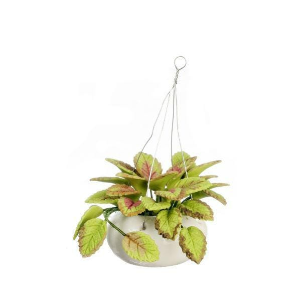 miniature hanging plant