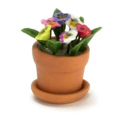 miniature pansies in a pot