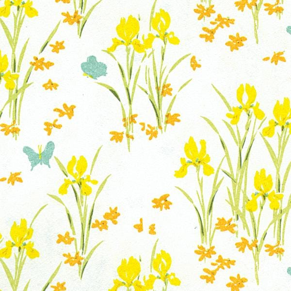 yellow iris wallpaper