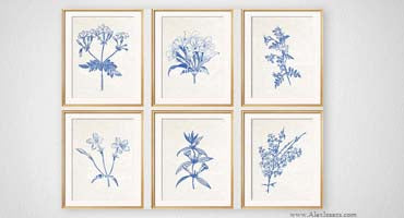 Blue Jasmine Prints on Cream Parchment Paper