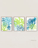 Blue and Green Wall Art for Beach House, Set of 3