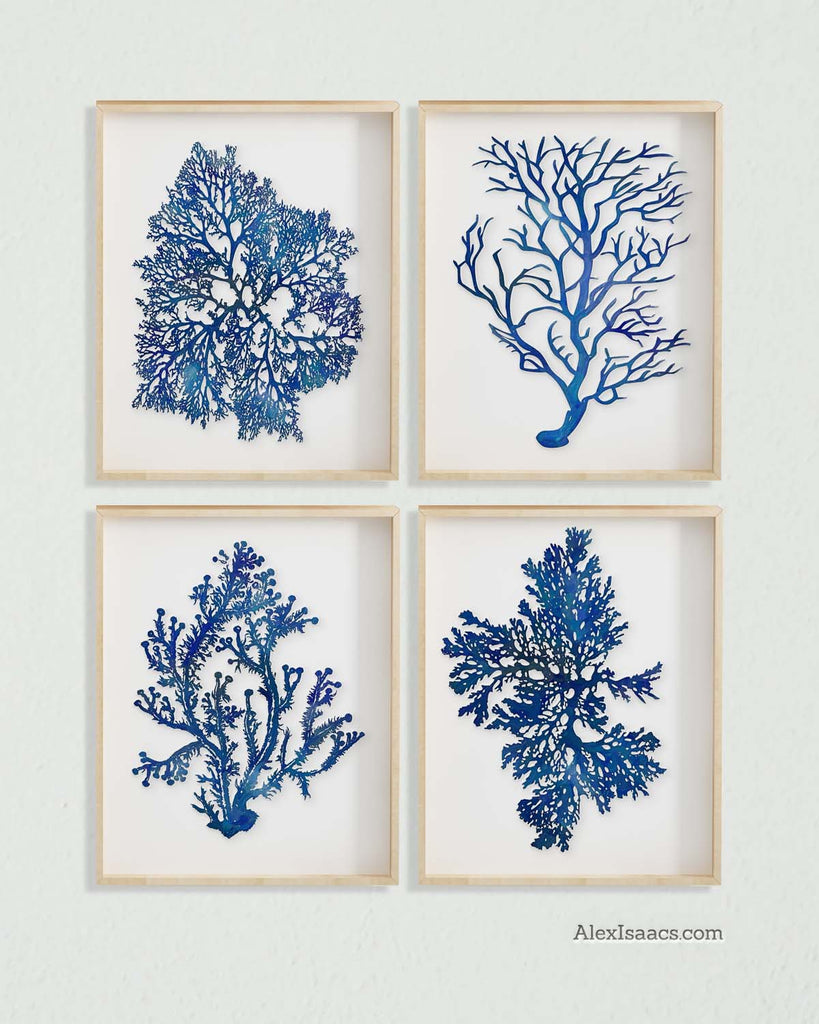 Blue Coral Prints, Set of 4-Prints-Alex Isaacs Designs