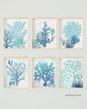 Teal Turquoise Blue Coral Artwork, Set of 6