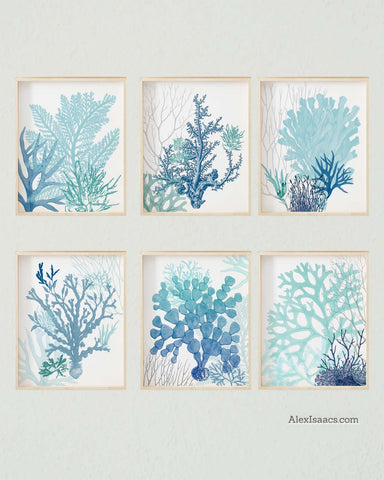 Teal Turquoise Blue Coral Artwork, Set of 6-Alex Isaacs Designs