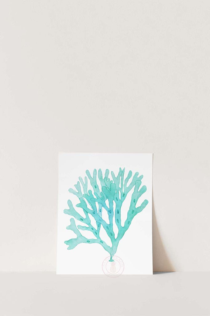 Aqua Coral Wall Art Set