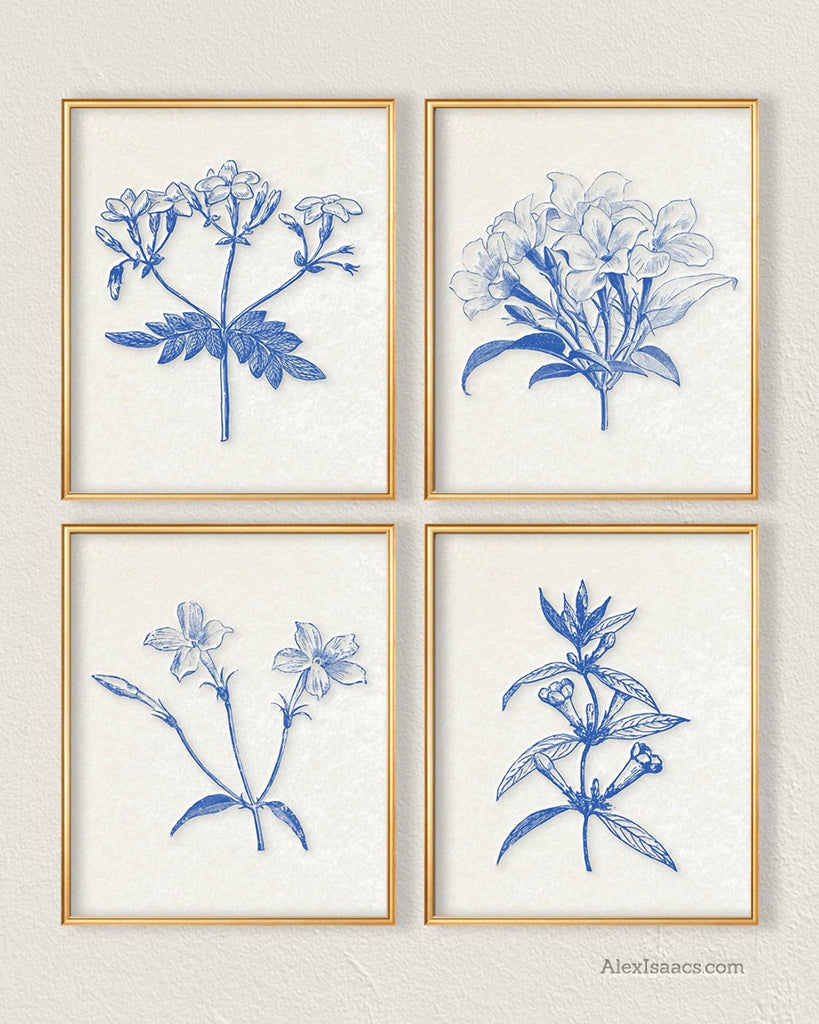 Blue Botanical Wall Art Set of 4-Prints-Alex Isaacs Designs