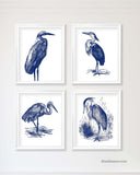 Great Blue Heron Prints, Set of 4-Alex Isaacs Designs
