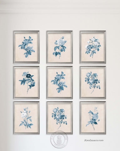 Blue Botanical Prints Set of 9