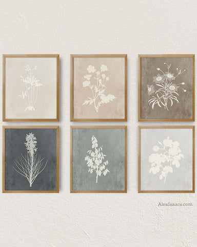 Modern Farmhouse Botanical Prints, Set of 6 Prints-Alex Isaacs Designs