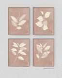Blush Botanical Print, Set of 4