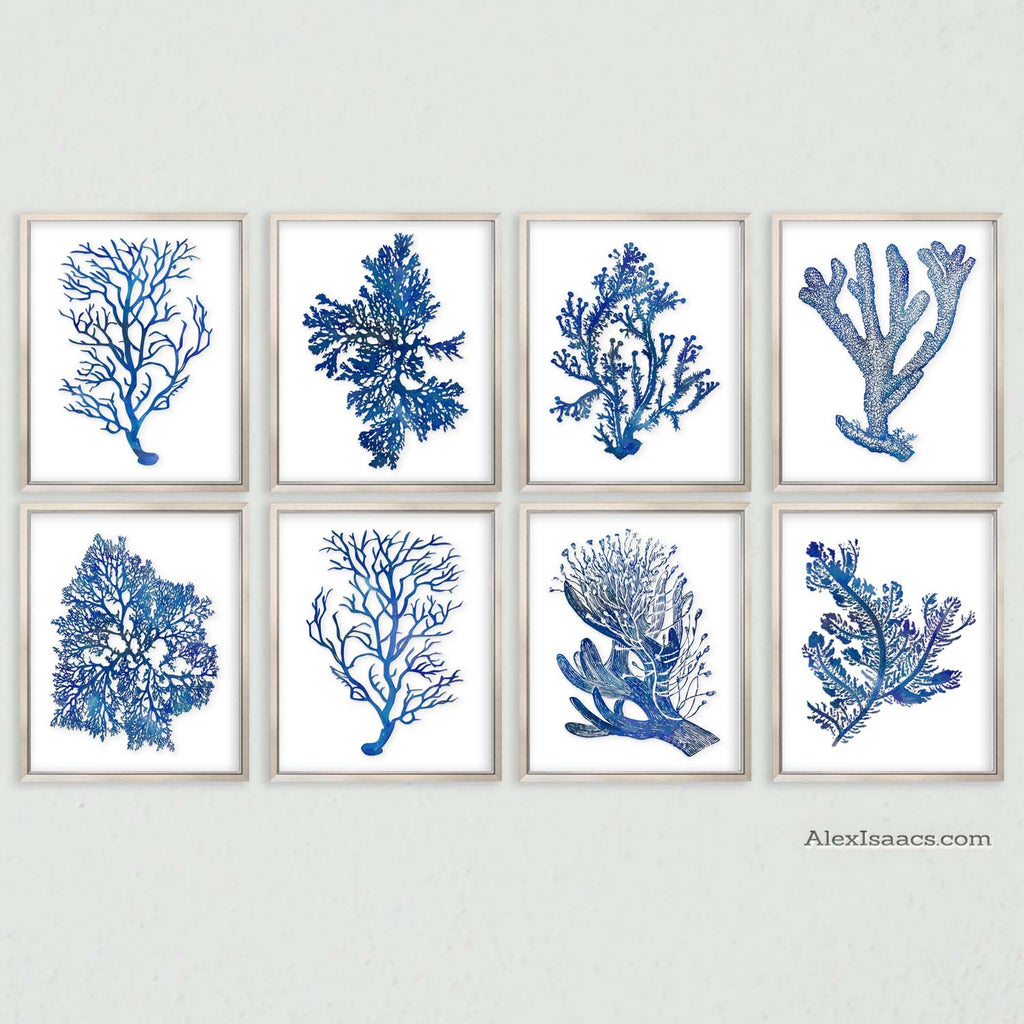 Indigo Cobalt Blue Coral Prints, Set of 8-Alex Isaacs Designs