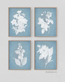 Denim Blue Botanical Wall Art, As seen on Pioneer Woman Magazine, Set of 4-Alex Isaacs Designs