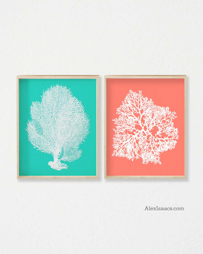 Coral Turquoise Wall Art, Featured on HGTV, Set of 2 Prints-Alex Isaacs Designs