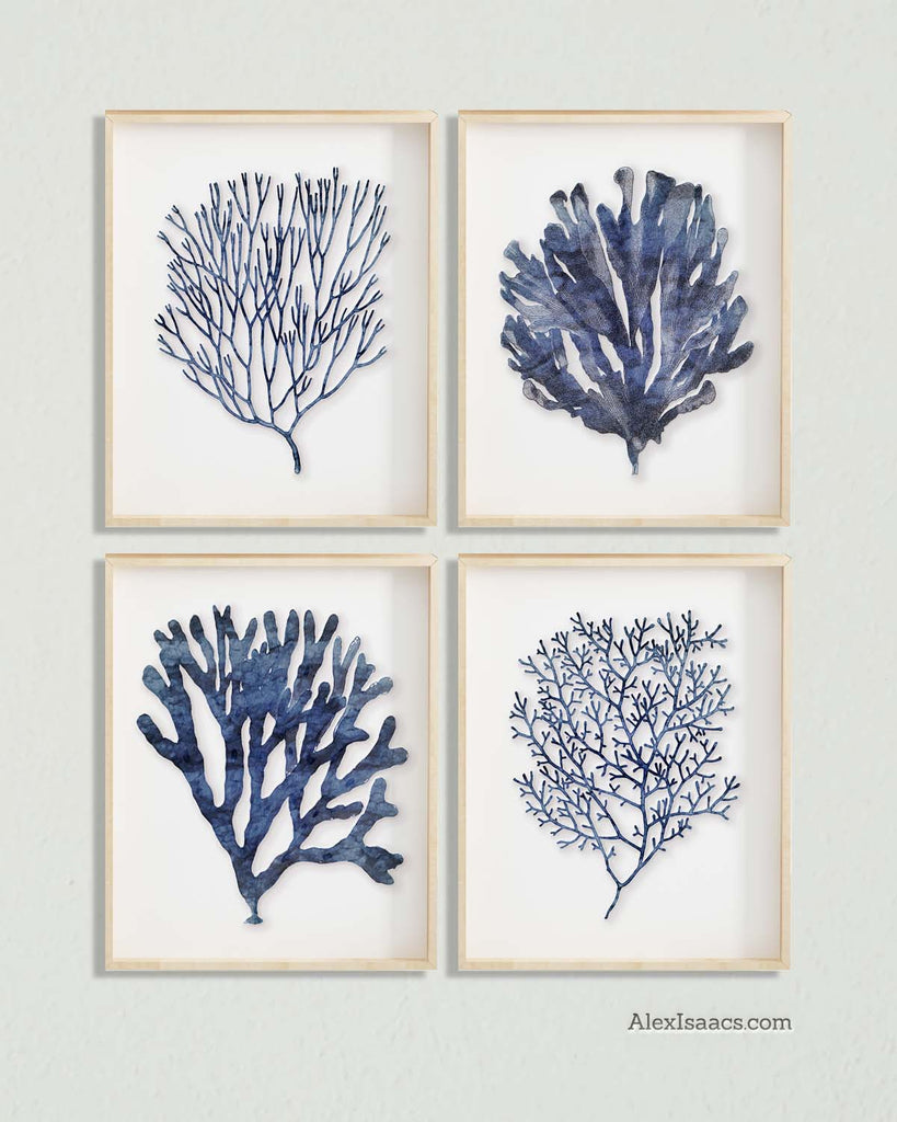 Indigo Blue Coral Prints, Art Set of 4-Alex Isaacs Designs