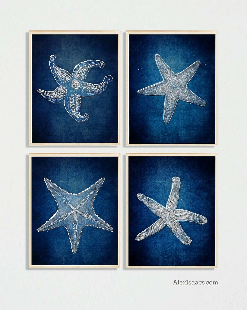 Indigo Starfish Prints, Set of 4-Prints-Alex Isaacs Designs