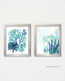 Teal and Blue Wall Art Sea Algae Prints, Set of 2
