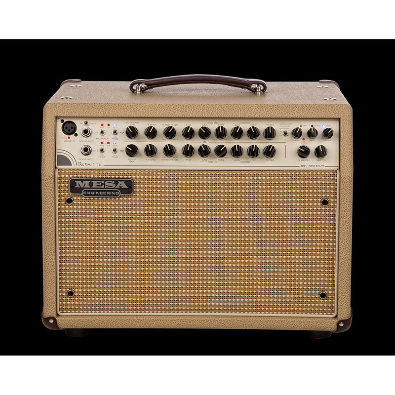 Mesa Boogie Rosette 300 / Two: