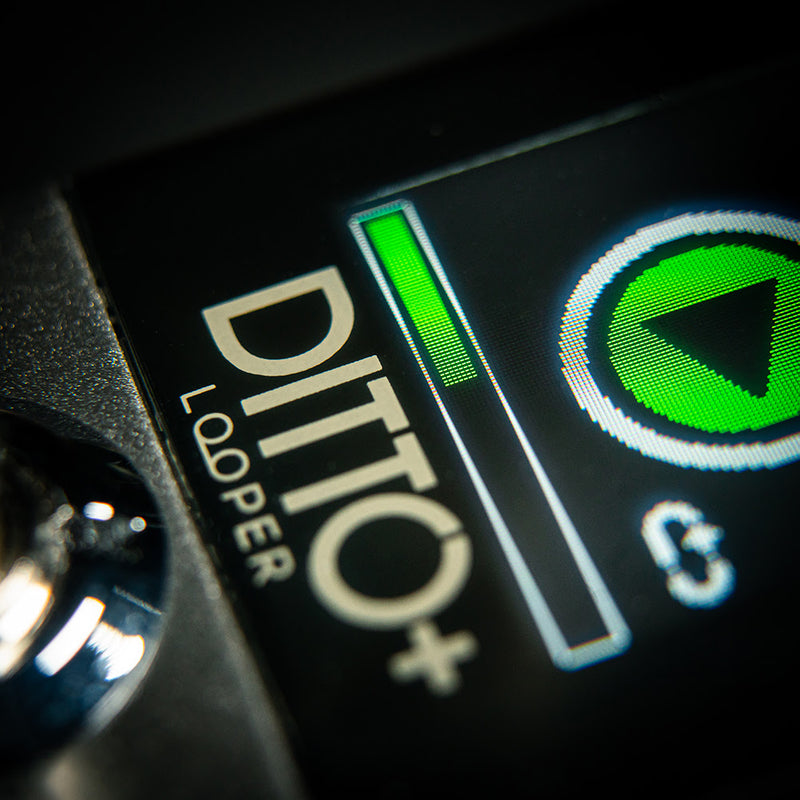 TC Electronic Ditto+ Plus Looper Pedal