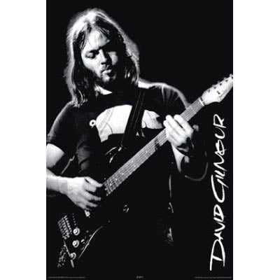 david gilmour poster motor city guitar. Black Bedroom Furniture Sets. Home Design Ideas