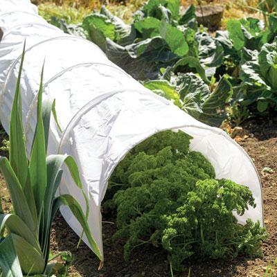 Polythene Early Start Grow Tunnel