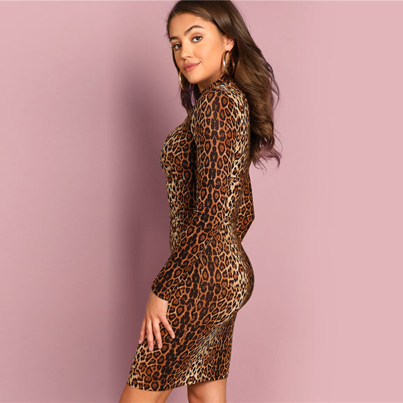 Leopard Top & Skirt Set