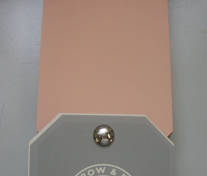 Farrow & Ball No. 9801