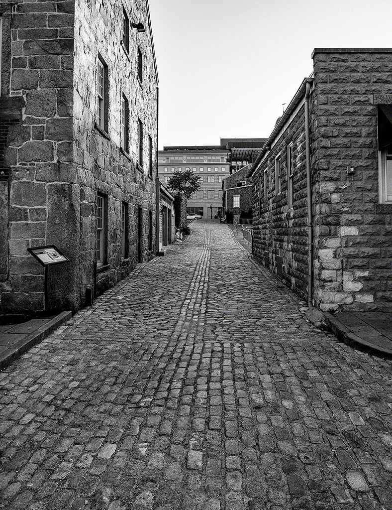 Rose Alley #2:  New Bedford Collection