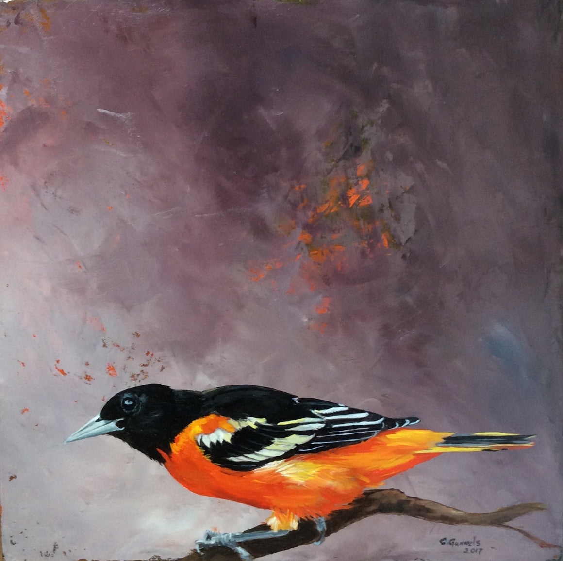 Baltimore Oriole #2, Original Oil Painting