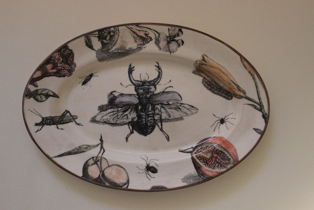 Bug & Fruit Oval Platter by Craig Crawford