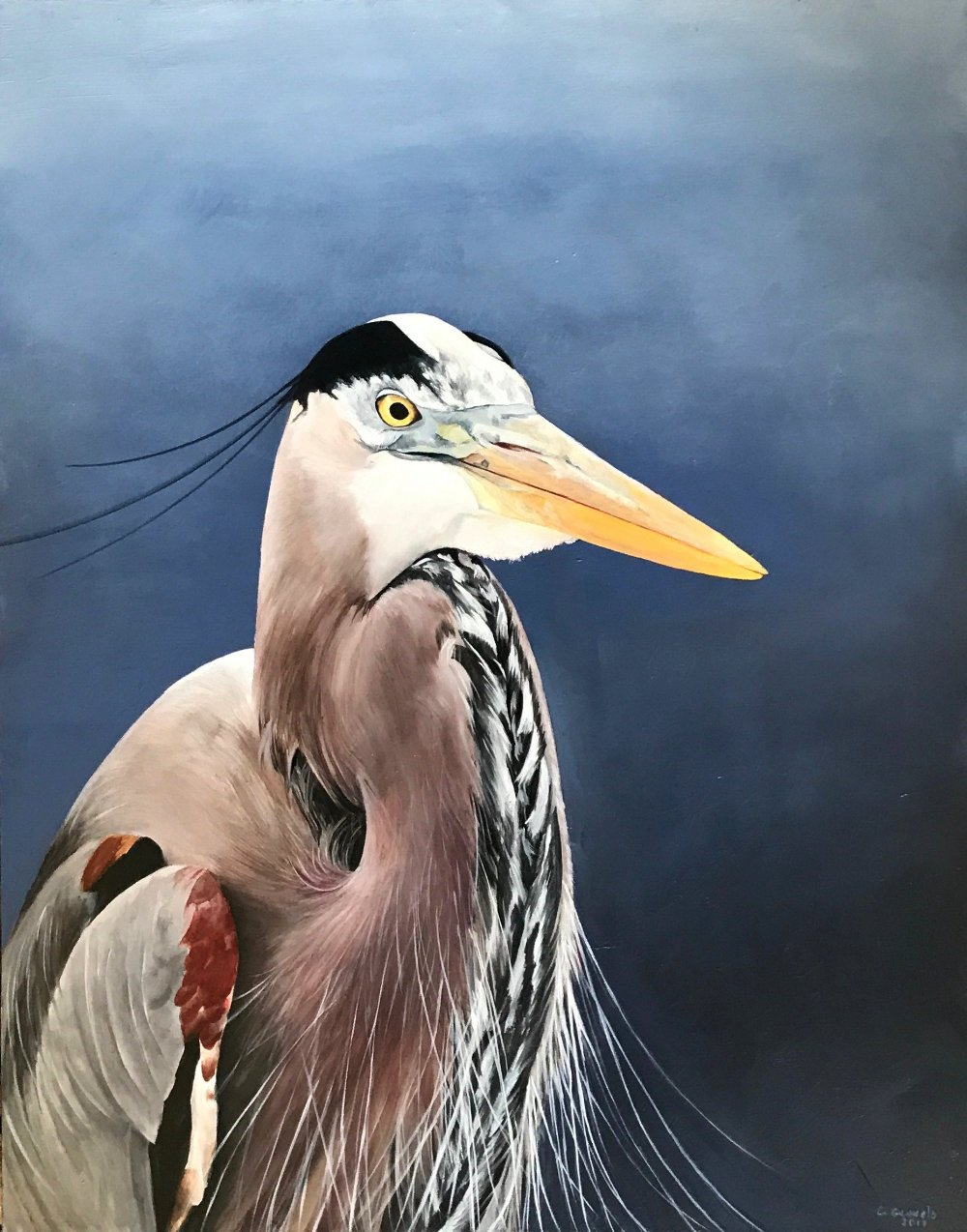 """Great Blue Heron II"", original oil painting"