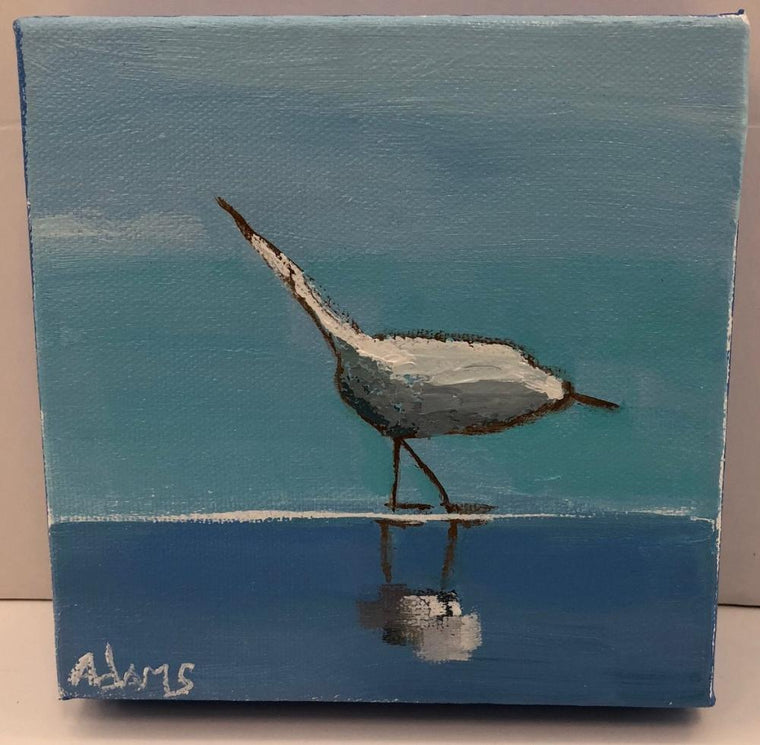 Sanderling I, Original Painting by Phyllis Dobbyn Adams
