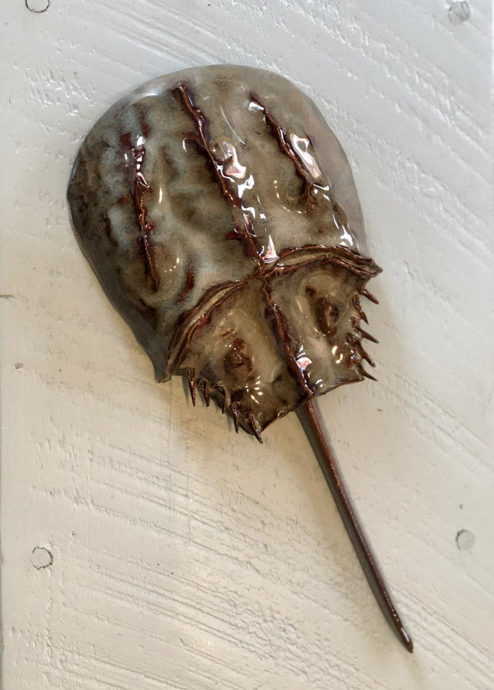Horseshoe Crab Wall Hanging - Medium