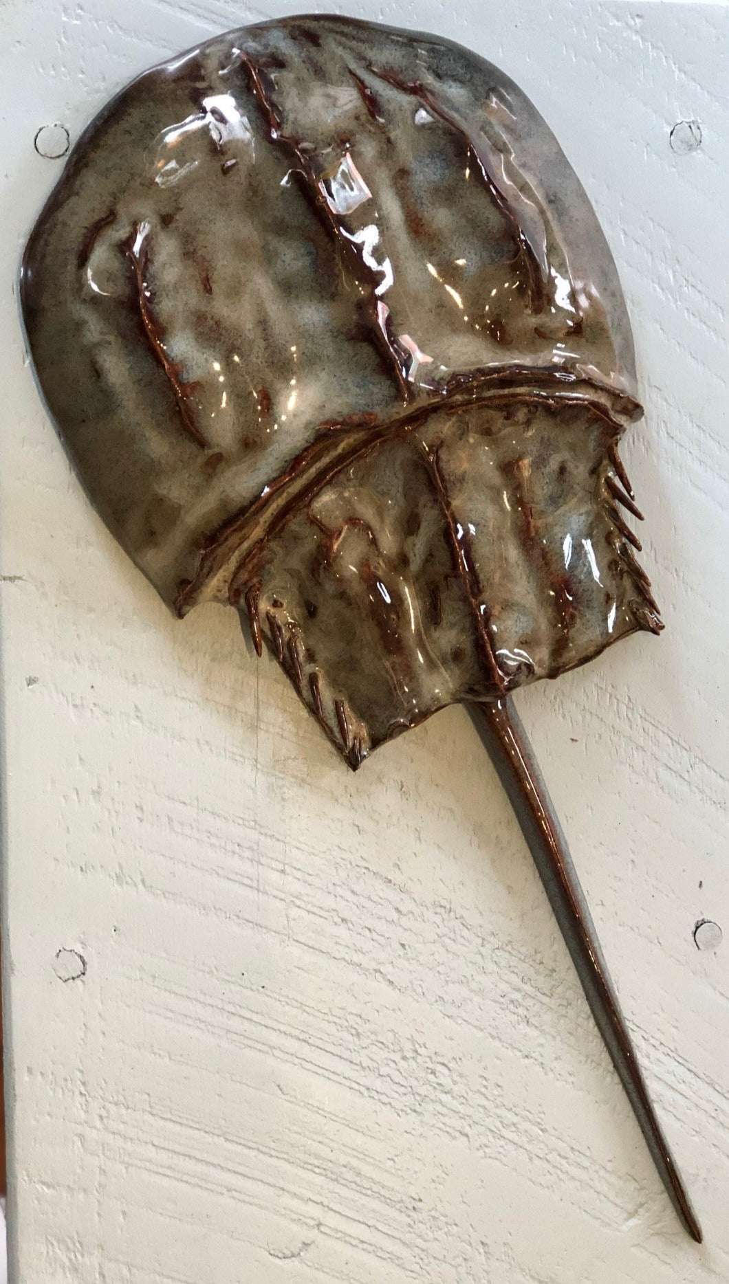 Horseshoe Crab Wall Hanging