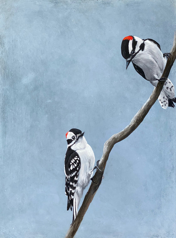 Downy Woodpeckers, Original Oil Painting