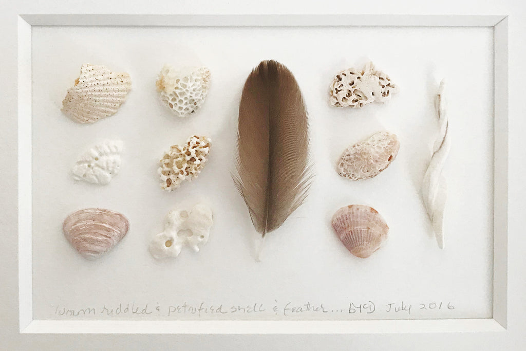 """Riddled Shell & Feather"" by Barbara McDowell"
