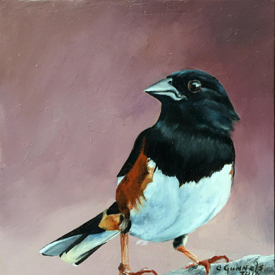 Towhee #1, Original Oil Painting