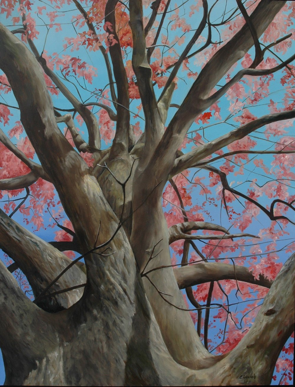 """Spring Oak"", Original Oil Painting by Christy Gunnels LaGue"