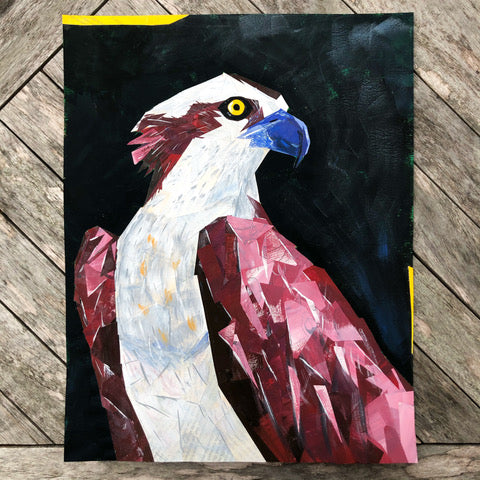 Osprey Collage by Margo Connolly-Masson