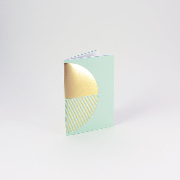Reflex Pocketbook Brass & Mint by Tom Pigeon - Standing