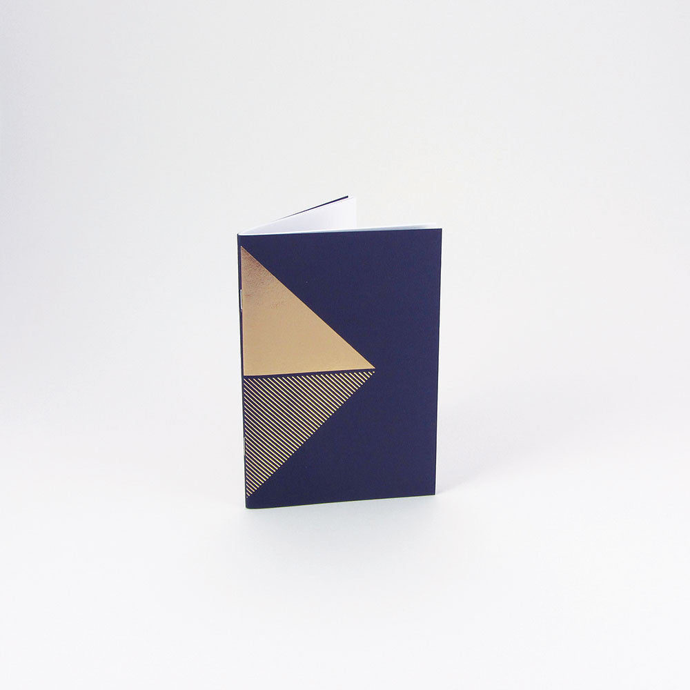 Reflex Pocketbook Brass & Navy by Tom Pigeon - standing