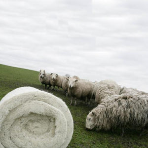 Cradle to cradle: wool insulation is a natural and renewable resource that is made with little processing, and it can be composted at the end of its useful life.