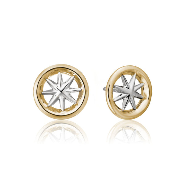 Star Wall Stud Earring