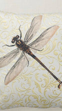 Dragonfly Pillow, Gold and White Damask, Pillow and Insert