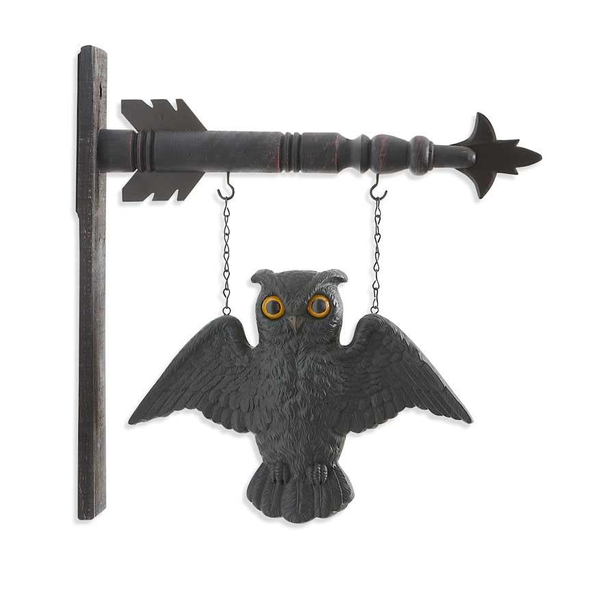 Black Flying Owl Arrow Replacement