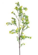 Yellow Seeded Branch Spray - 41""