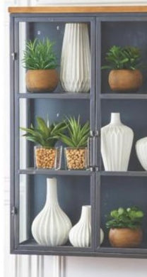 Agave in Square Glass Vases w/Pebbles - 2 Styles