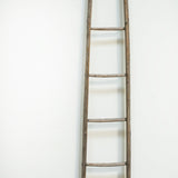 Johnny Ladder