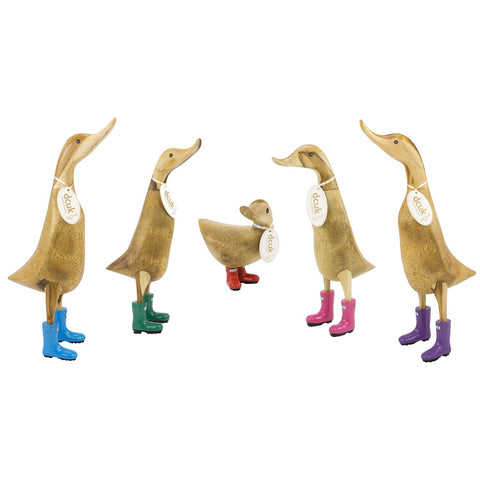 DCUK Coloured Welly Duck - 30cm Ducklet