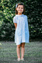 Sweet Pea Plumeti Blue Hattie Pocket Dress