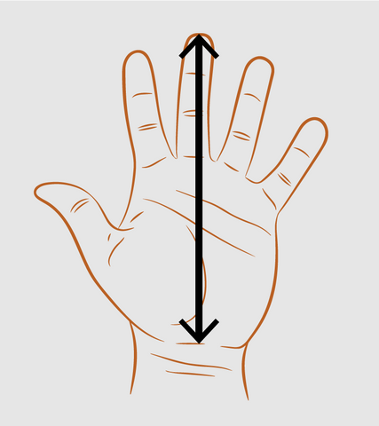 Diagram for measuring length of hand for glove sizing